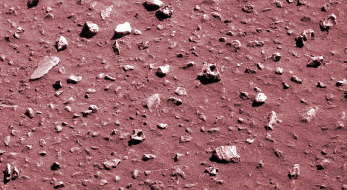 Fossils on Mars - A Collection of Evidence, page 1