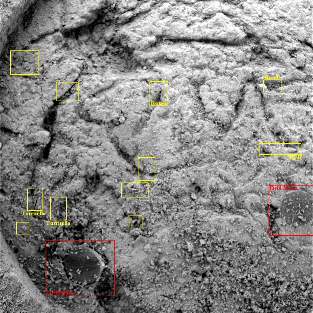 Mars 06A - Fossil Evidence on Mars? Page Two