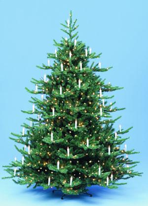 Yule Tree Topper