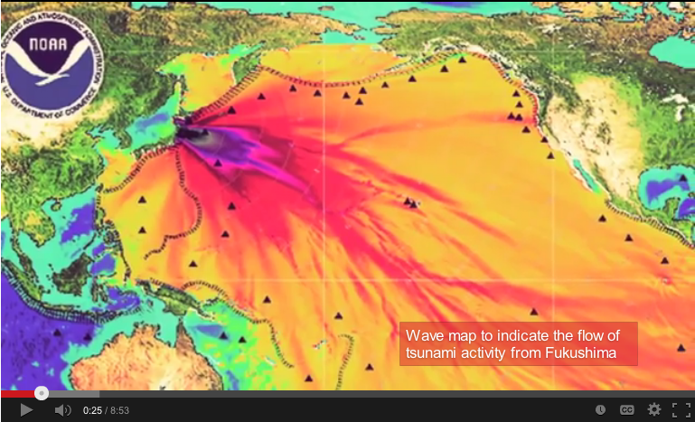 Picture of radiation leaking into the Pacific from Fukushima is a hoax