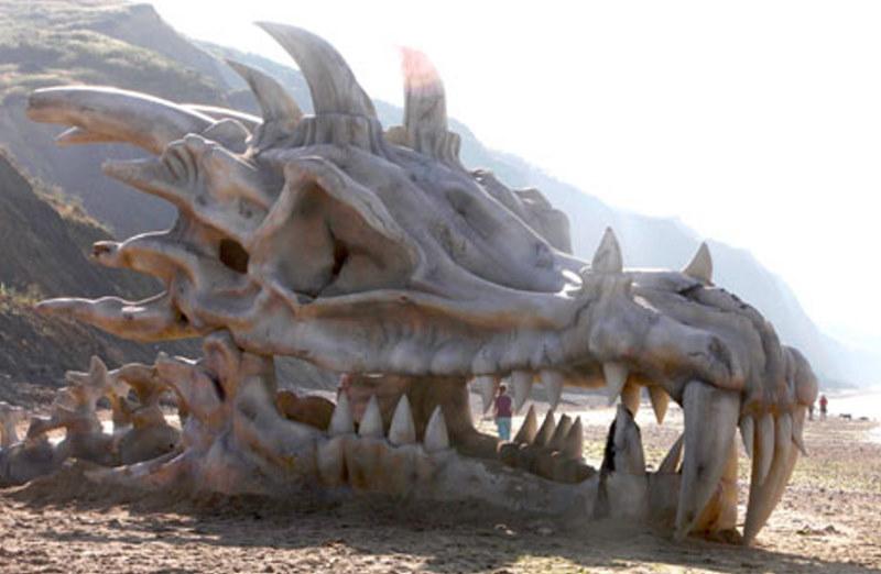 real dragons