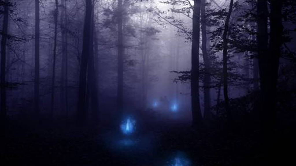 Aleya Ghost Lights in the marshes of West Bengal, India
